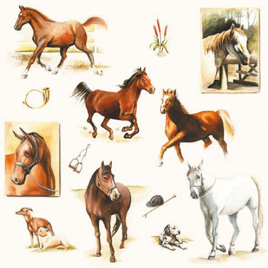 Paarden servetten 20 stuks. papieren servetten bedrukt met plaatjes van paarden. de servetten zijn ongeveer ...