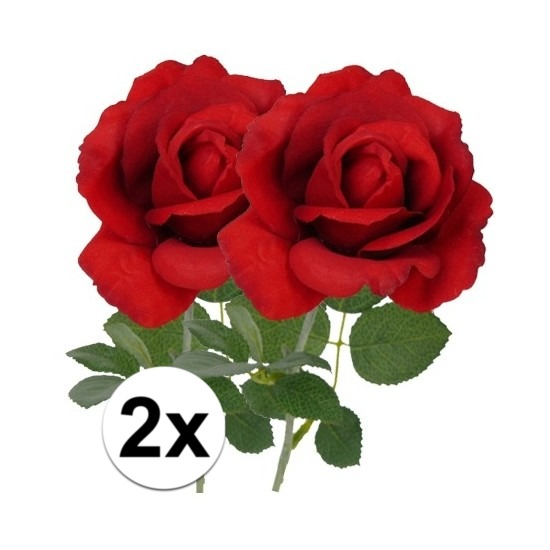 /speelgoed/hobby-artikelen/decoratie-materiaal/kunstbloemen--planten/kunstbloemen/kleuren-kunstbloemen/rode-kunstbloemen