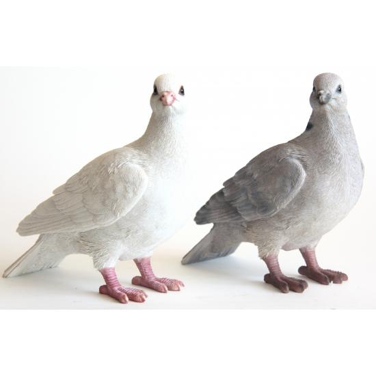 Beeldje witte duif 20 cm