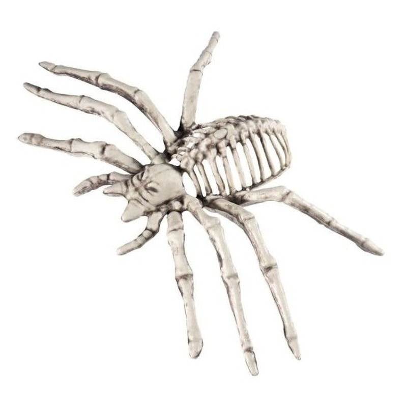 Spin skelet halloween/horror decoratie 22 cm