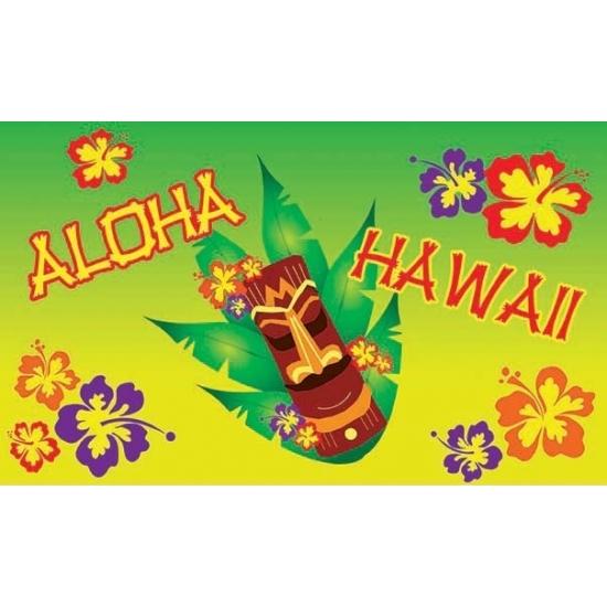 Hawaii feestartikelen Vlag Hawaii aloha