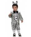 Baby zebra pakje met haarband