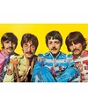 Poster The Beatles Lonely Hearts Club 61 x 91 cm