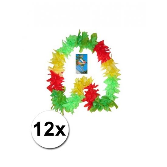 12 Hawaii kransen Limburg