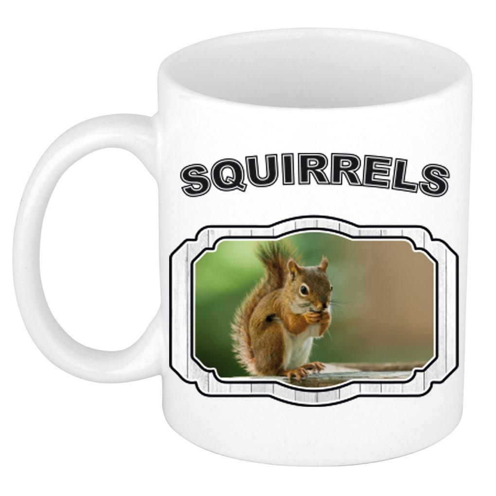 Dieren eekhoorn beker - squirrels/ eekhoorns mok wit 300 ml