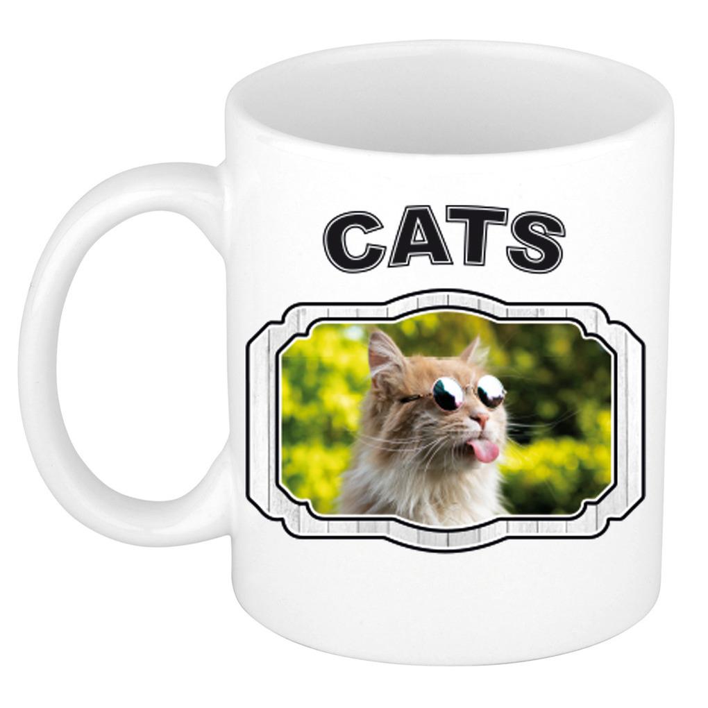 Dieren gekke poes beker - cats/ katten mok wit 300 ml