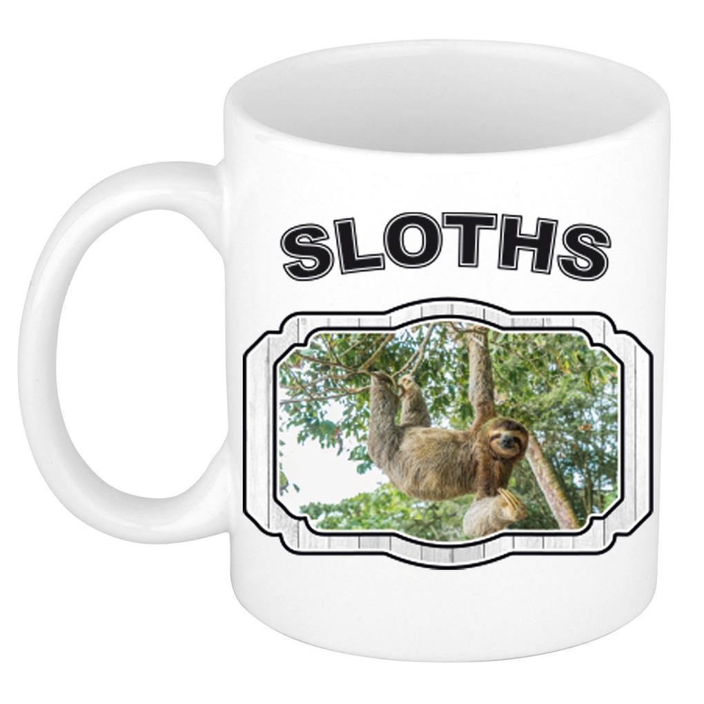 Dieren hangende luiaard beker - sloths/ luiaarden mok wit 300 ml