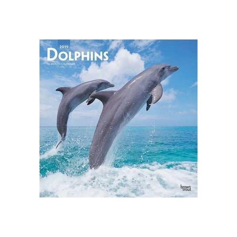 Dieren kalender dolfijnen 2019