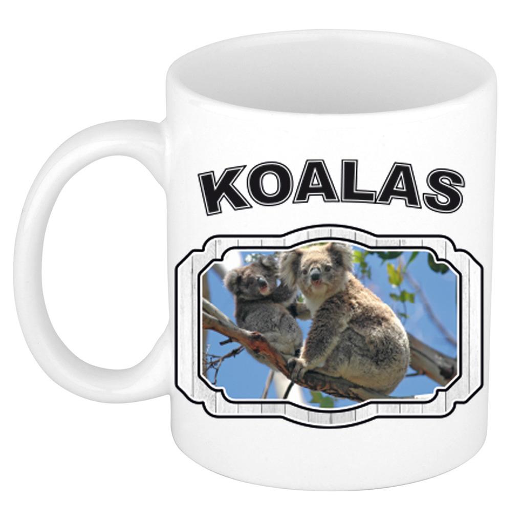 Dieren koala beer beker - koalas/ koalaberen mok wit 300 ml