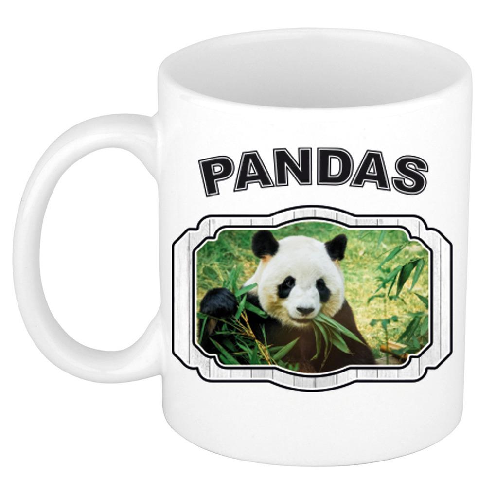 Dieren panda beker - pandas/ pandaberen mok wit 300 ml
