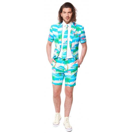 Flamingo zomer kostuum