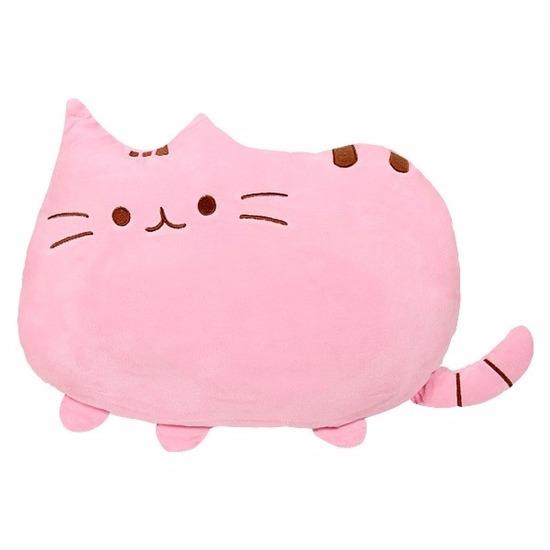 Kat/poes kussentje roze 40 cm