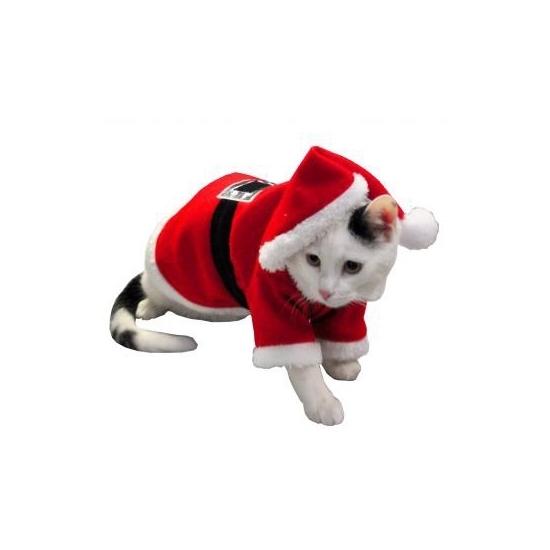 Kerst kostuum voor hond of kat