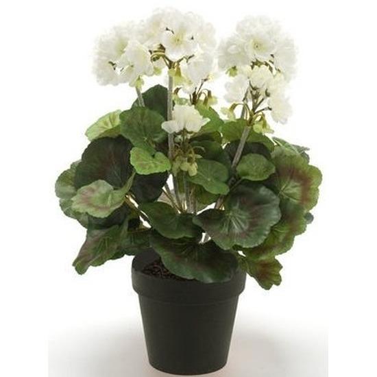 Kunstplant Geranium wit in zwarte pot 35 cm