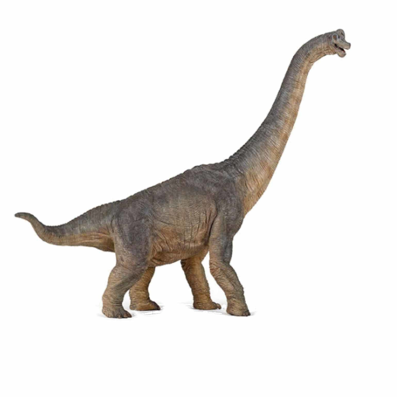 Plastic braciosaurus dinosaurus 39,5 cm Multi