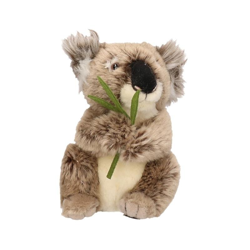 8d9b4b118f2dbd Pluche koala knuffel 17 cm - Koala artikelen - Bellatio warenhuis