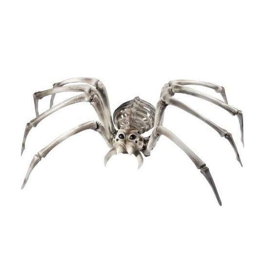 Spin skelet halloween/horror decoratie 82 cm